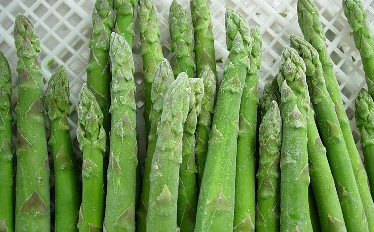 congelado-asparagus